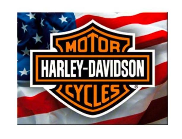 Magnet frigider - Harley Davidson USA 0