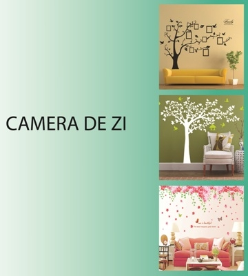 Banner Principal - Camera de zi