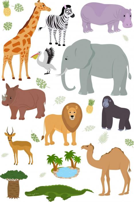 Autocolant de perete pentru copii - Animale din Africa - 60x90 cm 0