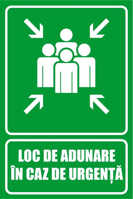 Panou Loc de Adunare in caz de Urgenta - 20x30 cm [0]