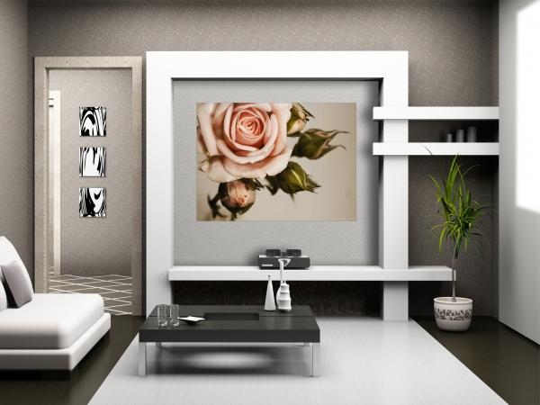Fototapet Trandafiri Roz 1
