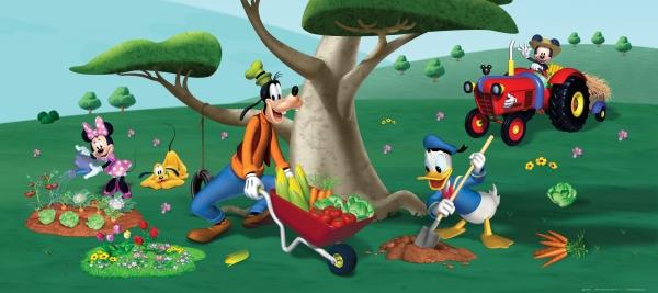 Fototapet Disney - Mickey in gradina 0