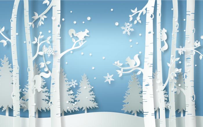 Fototapet Winter Forest [0]