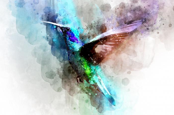 Fototapet Abstract Colibri [0]