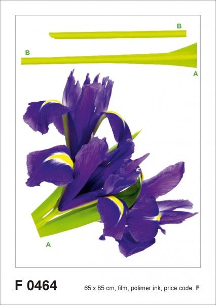Sticker Iris Violet - 65x85cm - F0464 [0]