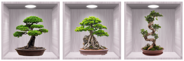 Sticker Bonsai 3D - Nise Lemn- 120x40 cm 0