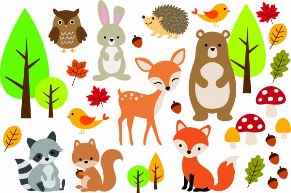Sticker camera bebe - Animale din padure [0]