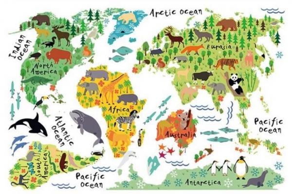 Sticker educativ pentru copii - Harta lumii pentru copii 6