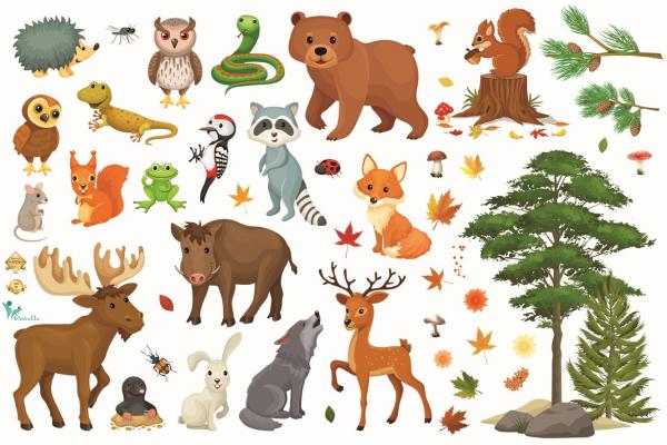 Sticker pentru Copii - Animalele Padurii 0