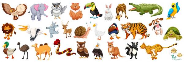 Sticker Animale - 30x90 cm 0