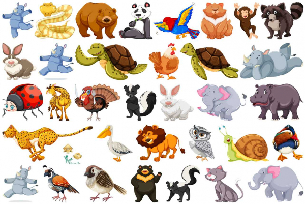 Sticker Animale Diverse - 60x90 cm 0