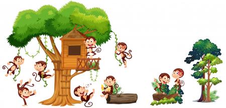 Autocolant camere copii - Casa Maimutelor - 60x90 cm0
