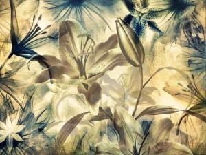 Fototapet Flori de Crin [0]