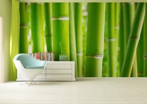 Fototapet Bambus1