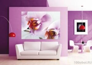 Fototapet Orhidee FTM 04890