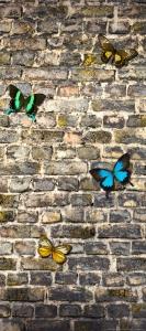 Fototapet Fluturi pe Zid de Piatra0