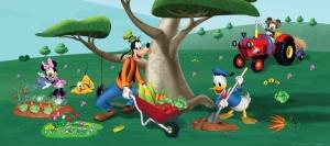 Fototapet Disney - Mickey in gradina0
