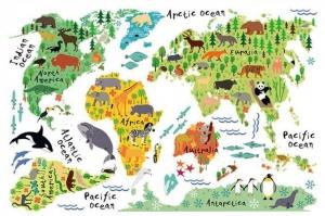 Sticker educativ pentru copii - Harta lumii pentru copii6