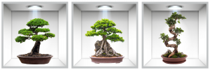 Sticker Bonsai 3D - Nise Perete - 120x40 cm0