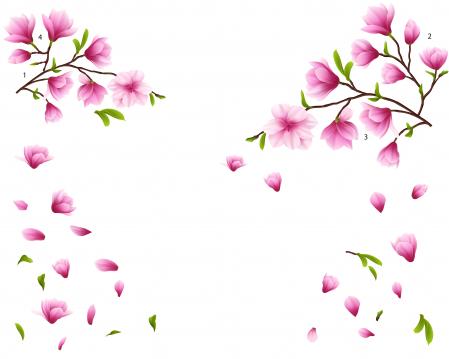 Sticker Flori de Magnolie - 60x90 cm [1]