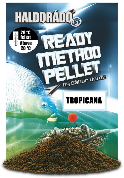Haldorado Ready Method Pellet - Winter 0.4kg, 2-3 mm [3]