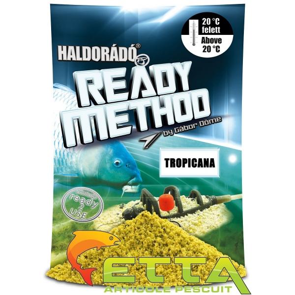 Haldorado Ready Method Winter 0.8kg 0