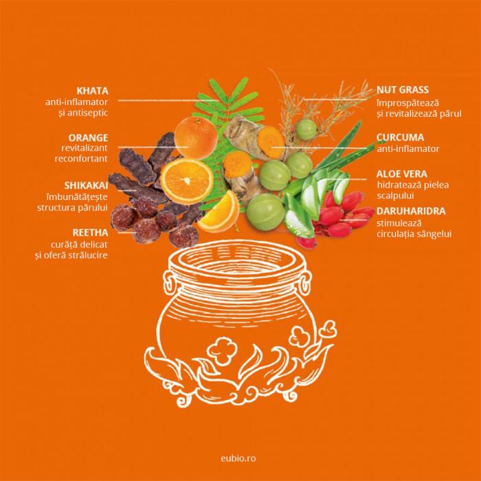 Șampon elixir pentru păr normal și gras, Orange Vitality [4]