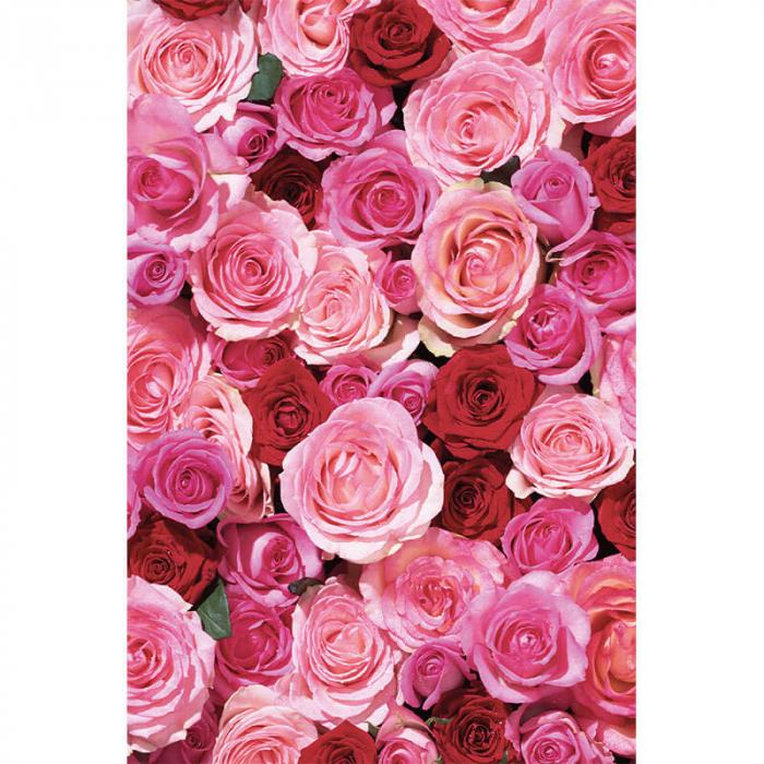 Ulei ayurvedic elixir Rose Love - Skin & Soul | Khadi, 100 ml [3]