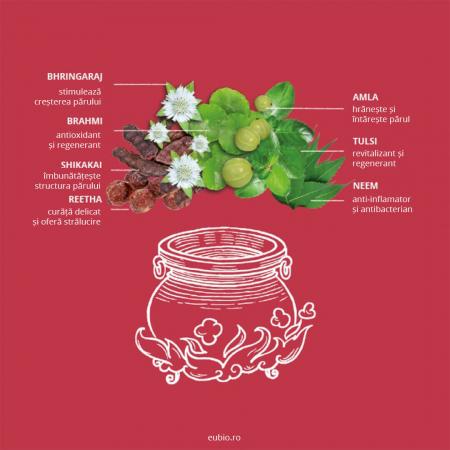 Șampon elixir pentru volum și strălucire, Amla | Khadi, 200 ml3