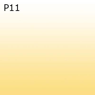 P11 0
