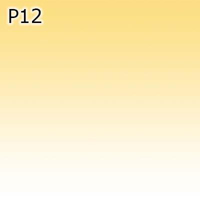 P12 0