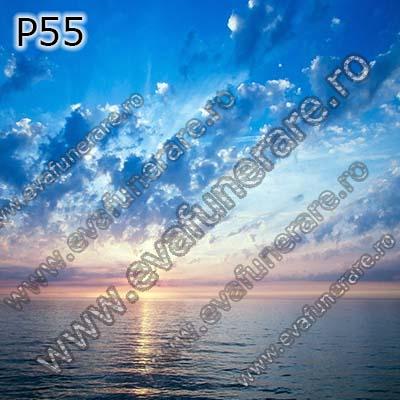 P55 0