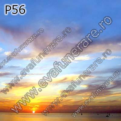 P56 0