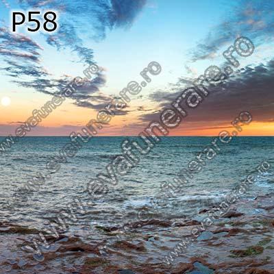 P58 [0]
