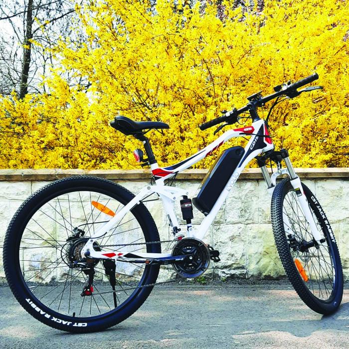 Electric Bike TX3 [7]