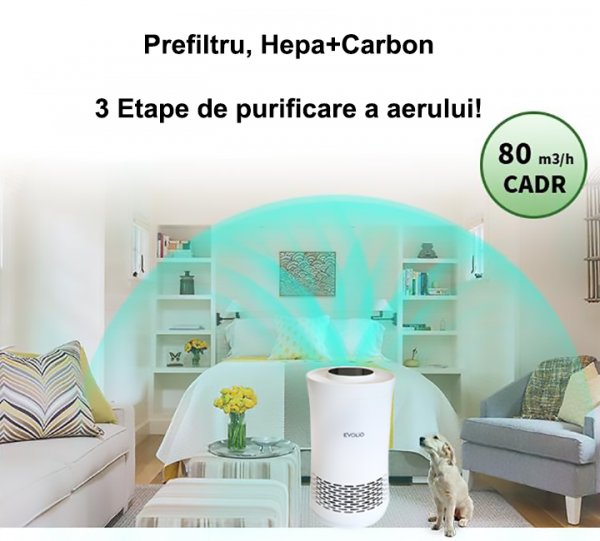 PURIFIQ M1 - HEPA + CARBON 3