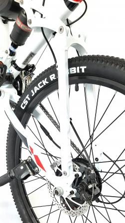 Electric Bike TX3 [4]