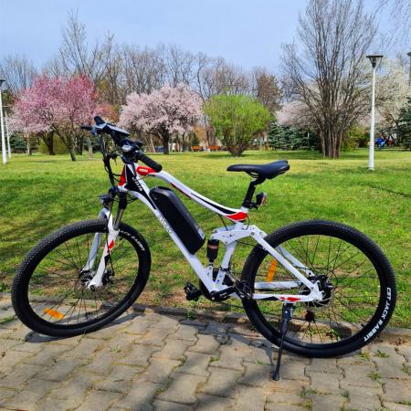 Electric Bike TX3 [8]