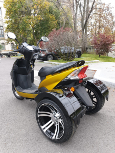 Electric Scooter TRIUS SMART [2]