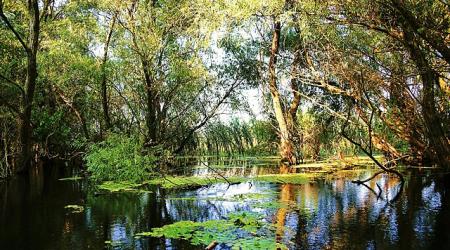 Delta Dunarii - o zi cat o vacanta5