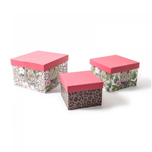 Set 3 cutii patrate SAFARI, 17x17 cm, inaltime 11.5 cm - ExpoMob [0]