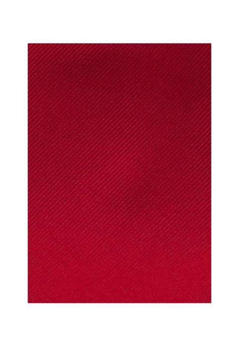 Cravata matase SEIDENSTICKER uni rosie [4]