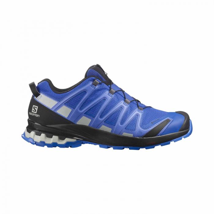 Pantofi alergare barbati SALOMON XA PRO 3D v8 GTX albastru [0]
