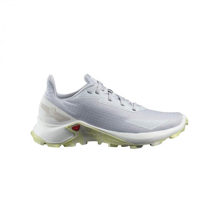 Pantofi alergare femei SALOMON ALPHACROSS BLAST W gri [0]
