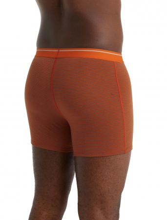 Boxeri lungi merino barbati ICEBREAKER Anatomica portocaliu [2]