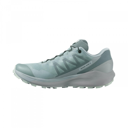 Pantofi alergare femei SALOMON SENSE RIDE 4 INVISIBLE W GTX gri [1]