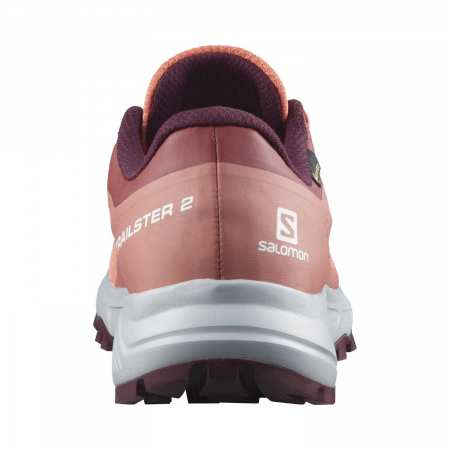 Pantofi alergare femei SALOMON TRAILSTER 2 GTX W caramiziu [4]