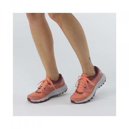 Pantofi alergare femei SALOMON TRAILSTER 2 GTX W caramiziu [1]