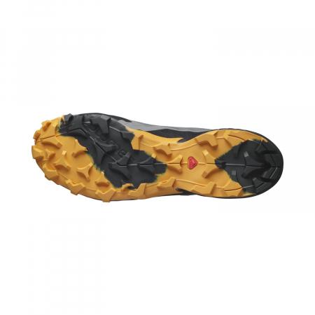 Pantofi drumetie barbati SALOMON CROSS HIKE GTX gri [5]