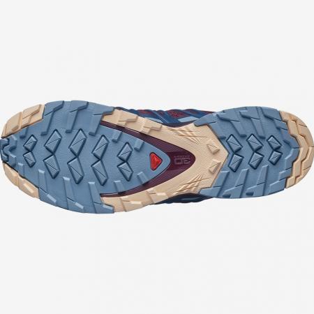Pantofi alergare femei SALOMON XA PRO 3D v8 visinii [2]